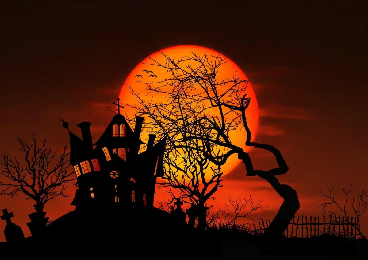 Comment décorer sa maison pour Halloween ?