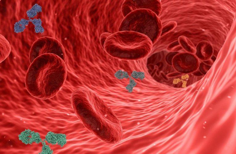 La pressothérapie et la circulation sanguine, quel est l'intérêt ?