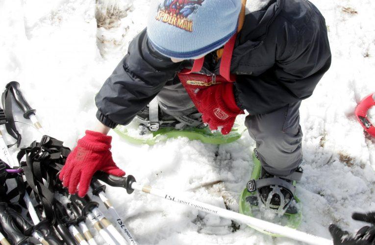 Comment s'équiper pour faire de la randonnée en raquettes ?